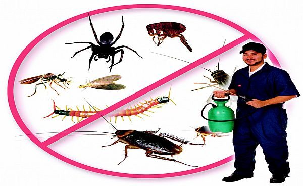 пръскане срещу хлебарки софия
